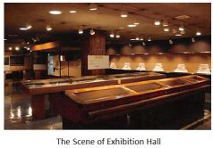 J Sword 03 Exhibition Hall