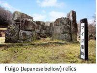Hashino- Fuigo x01