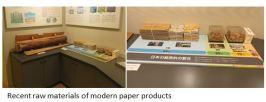 paper museum- Raw M x01.JPG