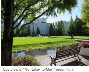 Noritake- Overview-x06